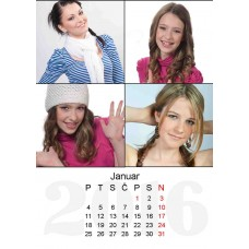 12-Sheet Calendar Sample 11P
