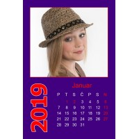 12-Sheet Calendar Sample 1PV