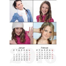 6-Sheet Calendar Sample 5P