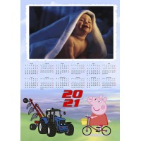 Enolistni koledar Vzorec 231